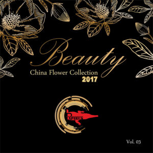 آلبوم Beauty-vol3