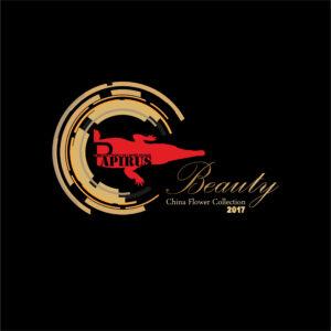 آلبوم Beauty