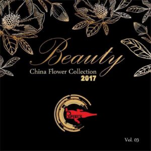 آلبوم Beauty-vol4